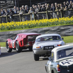 Goodwood_Members_Meeting_2014-0310