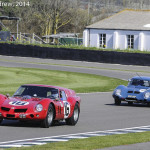 Goodwood_Members_Meeting_2014-0338