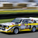 Goodwood_Members_Meeting_2014-0535
