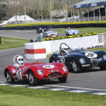 Goodwood_Members_Meeting_2014-0782