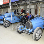 Goodwood_Members_Meeting_2014-1200