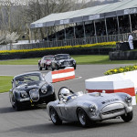 Goodwood_Members_Meeting_2014-1893