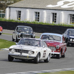Goodwood_Members_Meeting_2014-2047