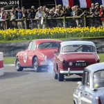 Goodwood_Members_Meeting_2014-2100
