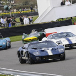 Goodwood_Members_Meeting_2014-2529
