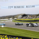 Goodwood_Members_Meeting_2014-2569