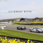 Goodwood_Members_Meeting_2014-2572
