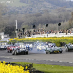 Goodwood_Members_Meeting_2014-2804