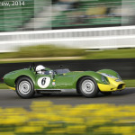 Goodwood_Members_Meeting_2014-2845