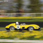 Goodwood_Members_Meeting_2014-2868