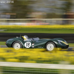 Goodwood_Members_Meeting_2014-2870