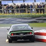 73rd_Goodwood_Members_Meeting_2015-0002