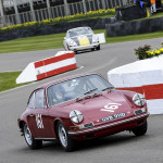 73rd_Goodwood_Members_Meeting_2015-0030