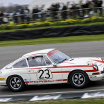 73rd_Goodwood_Members_Meeting_2015-0031
