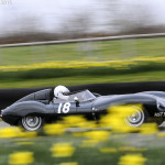 73rd_Goodwood_Members_Meeting_2015-0040