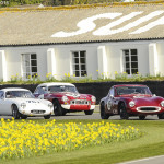 73rd_Goodwood_Members_Meeting_2015-0045