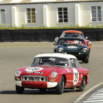 73rd_Goodwood_Members_Meeting_2015-0046