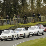 73rd_Goodwood_Members_Meeting_2015-0060
